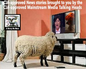 MEDIA-CIA-NEWS-SHEEPLE